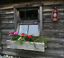 Old cabin by tanmari