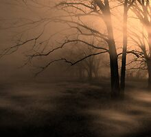 The Mist by charlena