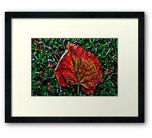 Autumn Leaves Fine Art Print Framed Print