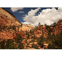 Sandstone Formations, Zion National Park Photographic Print