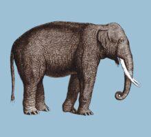 Elephant by Zehda