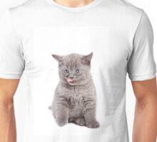 Funny gray kitten licked Unisex T-Shirt