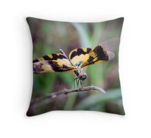 double winged dragon fly Throw Pillow