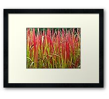 The Fire Went Wild Framed Print