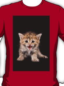 Funny ginger tabby kitten bengal T-Shirt