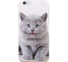 Fluffy gray kitten British iPhone Case/Skin