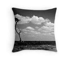 Hay Plains Throw Pillow