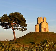 Tree and Romanesque Church on Hill, Croatia by Petr Svarc