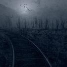 Solitude by Mary Ann Reilly