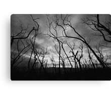 Another Black Saturday Canvas Print
