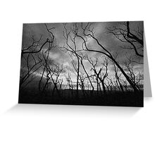 Another Black Saturday Greeting Card