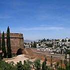 View of Granada from the Alhambra in Spain by Linda More