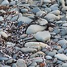 Pebbles of Tasmania by aldemore