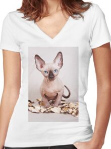 Sphynx kitten with blue eyes, no hair Women's Fitted V-Neck T-Shirt