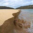 River mouth erodes ocean beach, Nelson Beach, Mimosa Rocks National Park by Dave P