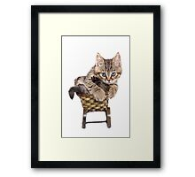 Funny Siberian striped kitten Framed Print