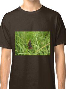 Scotch argus butterfly Classic T-Shirt