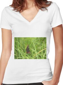 Scotch argus butterfly Women's Fitted V-Neck T-Shirt