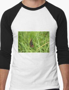 Scotch argus butterfly Men's Baseball ¾ T-Shirt