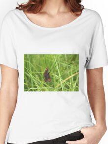 Scotch argus butterfly Women's Relaxed Fit T-Shirt