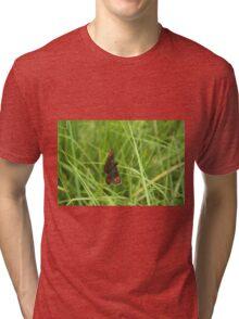 Scotch argus butterfly Tri-blend T-Shirt