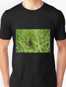 Scotch argus butterfly T-Shirt