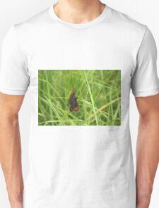 Scotch argus butterfly Unisex T-Shirt