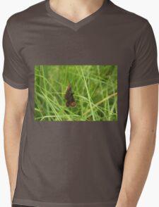 Scotch argus butterfly Mens V-Neck T-Shirt