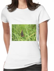 Scotch argus butterfly Womens Fitted T-Shirt