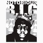 Biggie by markfitzy