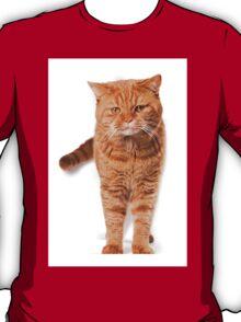 Big red cat T-Shirt