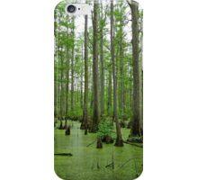 Cache River Swamp iPhone Case/Skin