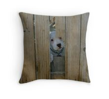 I can come out? Throw Pillow