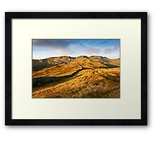 Bathed in Early Morning Sun Framed Print
