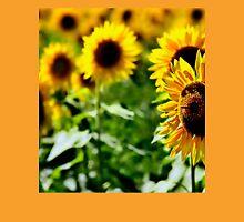 Sunflower field III Womens Fitted T-Shirt