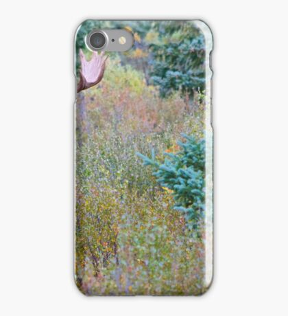 Moose couple iPhone Case/Skin