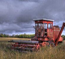 Fall Wheatfileds by Heather  Waller-Rivet  IPA