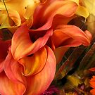 Flames of Orange by Orla Cahill Photography