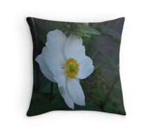 Time Efficiency Throw Pillow