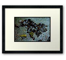 Untitled.00237 Framed Print