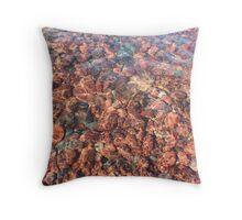 Rippled Rocks Throw Pillow