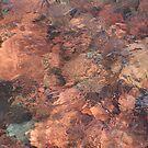 Sunset Rocks by Karen K Smith