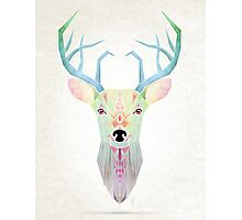 white deer Photographic Print