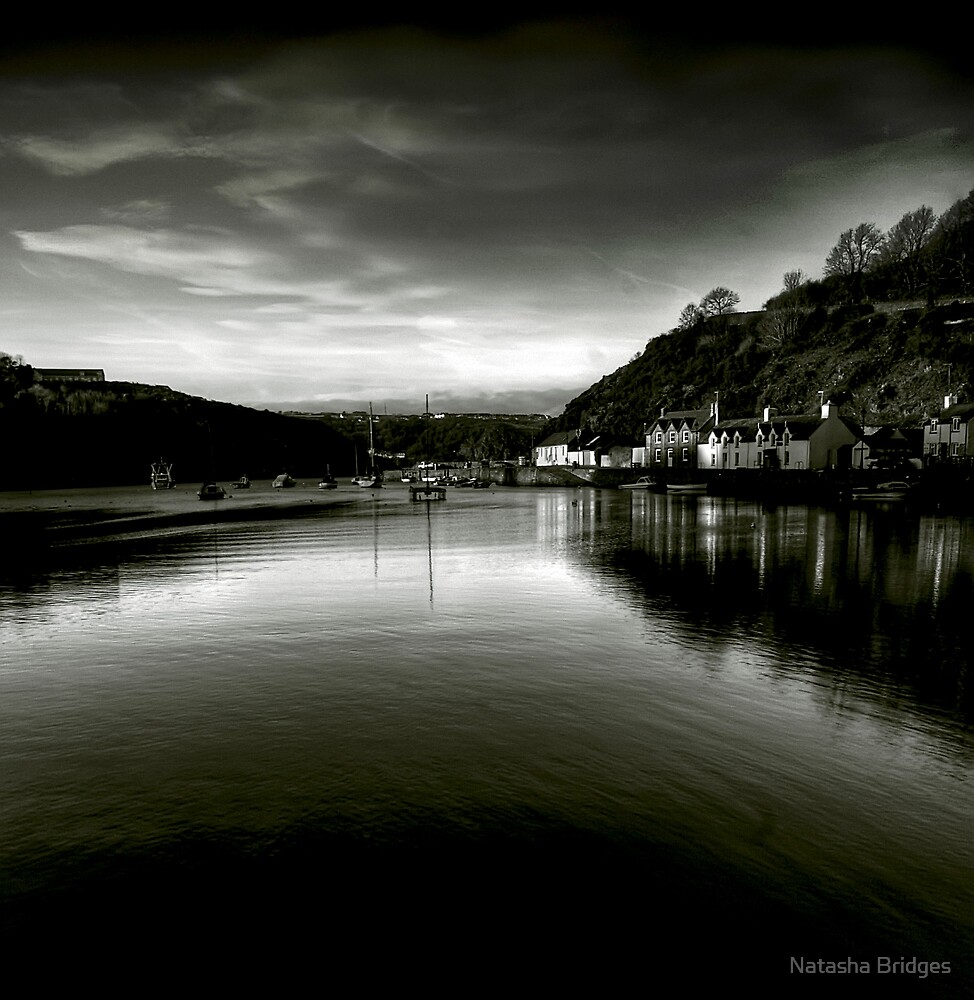 Fishguard Harbour by Natasha Bridges