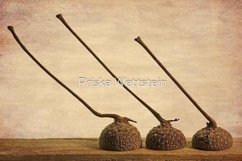 Trio by Priska Wettstein