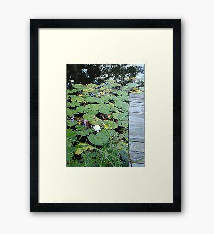 Dockside Framed Print
