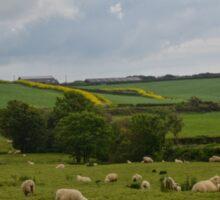 Rural England............... Sticker