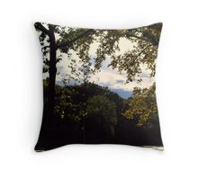 Rememberence of Summer Throw Pillow