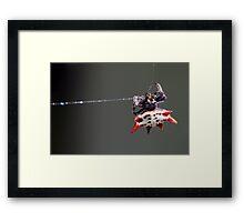 Life by a Thread Framed Print