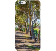 Crooked Tree Lined Drive iPhone Case/Skin